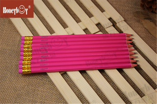 Honeyboy Girls Pink Body Hex Standard Paint Pencil From China